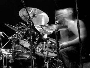 wild_drums
